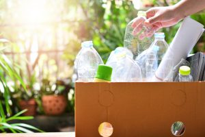 Recycling Box Bottles