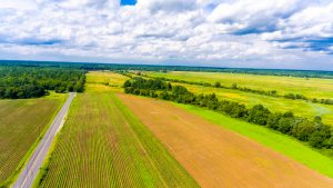 Middleboro, MA farm lands